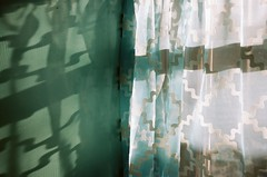 Abstraction (Jim Davies) Tags: 35mm film filmfilmforever oldfilm 35mmfilm canon eos 500 slr colourfilm veebotique columbus ohio usa december hockinghills alleghenyplateau kodak portra 160asa
