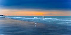 Plage de Blankenberge (YᗩSᗰIᘉᗴ HᗴᘉS +8 500 000 thx❀) Tags: plage sunset belgium belgique blankenberge water mer sea mouettes birds seagull oiseau blue orange landscape 7dwf hensyasmine