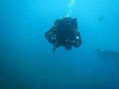 Diver and platform (CZDiver) Tags: scubagear scubadiving divinggear doublehosescubaregulator aqualungmistral scubadiver scuba scubatank drysuitdiving drysuit underwater