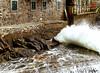 Rough sea in Tellaro (danilocolombo69) Tags: danilo colombo mare mareggiata tellaro borgo marinaro onde schiuma nikonclubit danilocolombo69 ☯laquintaessenza☯