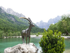 Julian Alps seen from Kranjska Gora