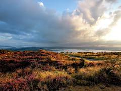 Sunrise on Kit Hill [ Explore ] (NikNak Allen) Tags: cornwall devon grass grasses mist fog valley sky cloud clouds light