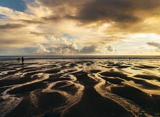 Golden low tide