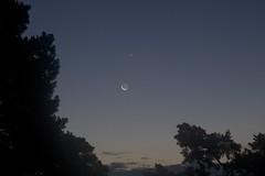 Moon, Venus and Regulus I (proefdier) Tags: astronomie astronomy astrophotography dämmerung mond moon morgen outdoor planet planeten regulus venus