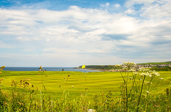 Out Of Bounds (williamrandle) Tags: golf cullen banffshire scotland northeastscotland moray morayfirth uk summer 2017 portknockie homeofgolf tee green clouds sea northsea grass views outdoors landscape seascape plants nikon d7100 tamron2470f28vc sky field fence