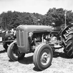 ferguson (bergytone) Tags: bw blackandwhite film welta weltax jena zeiss tessar 28 fuji neopan acros xtol michigan massey ferguson tractor muskegon folding 120 6x6