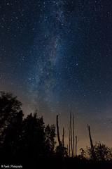 Sky in Poland - Podkarpacie (Maciej Pawlik) Tags: thebp polska poland night star nikon d7200 sigma 1020 podkarpacie skyatnight
