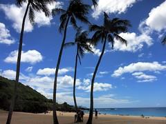08-15-17 Family Vacation 13 (derek.kolb) Tags: hawaii oahu haleiwa waimea