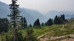 Pinnacle Peak Trail (Go4Hike) Tags: pinnaclepeak pinnacle hiking hikingwashington washingtonhiking summerhiking nature landscape trail washingtontrails pacificnorthwesthiking pacificnorthwest mtrainier mtrainiernationalpark mountains pinnaclepeaktrail mountrainierhiking augusthiking summerhikinginwashington