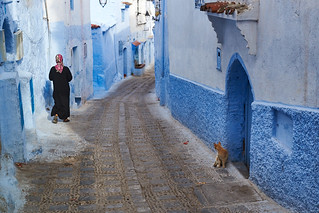 Cat looking at Veiled woman in djellaba walking in medina, Chefchaouen, Morocco
