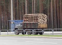 ЗИЛ-131 / Zil 131 (Skitmeister) Tags: минск беларусь жодино belarus minsk witrusland carspot skitmeister