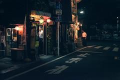 Oimachi - Tokyo, Japan (inefekt69) Tags: japan tokyo oimachi 日本 東京 大井町 street asia city nikon d5500 neon night yokocho alley higashikoji heiwakoji suzurandori