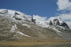 IMG_0618 (y.awanohara) Tags: kailash kora kailashkora ngari tibet may2017 yawanohara westface