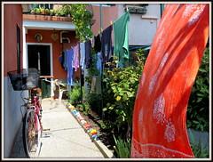 Bucato a Murano (magister111) Tags: murano courtyards cortiletti venezia pannistesi panni laundry