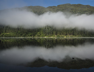 Mist Lying over the Trees - Loch Eck July 2017