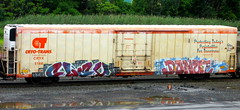 clev - donut (timetomakethepasta) Tags: clev donut cik nme eos freight train graffiti art reefer cryx cryotrans phoenix benching selkirk new york photography faded