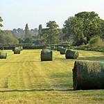 Haymaking - Otterton, Devon - May 2017 thumbnail