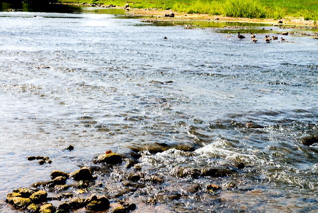 White River - Muncie - August 25, 2017