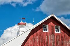 Pig Weather Vane 230 of 365 (4) (bleedenm) Tags: dekalbcounty 2017 august barntours dekalb farms illinois summer travelillinois illinoistravel
