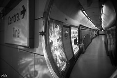 Project 365; #273 (iMalik1) Tags: 273 blackandwhite queensway monochrome londonr centrallondon canoneosm3 thetube centralline photooftheday leadinglines makeitealing snappedinealing getwestlondon project365 transportforlondon photoadaychallenge londonphotographer canonwhatelse canonuk london canonphotography tube trainstation streetphotography mycanon potd urbanlandscapes underground mirror train publictransport reflection tfl monotone
