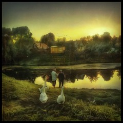 In the town of Tarusa,fisherman and geese. (odinvadim) Tags: mytravelgram paintfx textured textures iphone editmaster travel iphoneography sunset evening iphoneonly church painterly artist snapseed landscape photofx specialist iphoneart graphic painterlymobileart