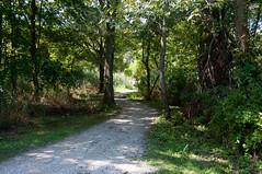 Terrapin Nature Area, Stevensville MD 28 (Larry Miller) Tags: naturepark conservation chesapeakebay maryland 2017