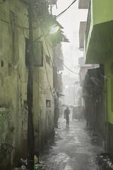 Rainy avenue (Photosightfaces) Tags: colombo maradana rain rainy lane avenue silhouette wet sri lanka lankan srilanka srilankan monsoon