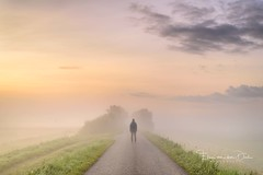 Loneliness (Ellen van den Doel) Tags: autumn zonsopkomst sunrise loneliness endless landscape mist overflakkee nederland end color fall september herfst ochtend morning summer 2017 road lucht kleur netherlands person weg sky fog landschap human zomer goeree sommelsdijk zuidholland nl