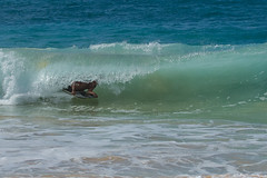 J68A6798-2 (patriciacorsiatto) Tags: hawaii2017 at beach