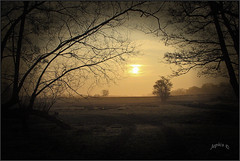 Chefs-d'oeuvre.. (Picture post.) Tags: landscape nature green sunrise springtime vignette trees fields countryside frame sunburst paysage mist brume arbre depth