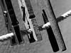 Wäscheklammern (ingrid eulenfan) Tags: macromondays makro wäscheklammern clothespins evolution objekt object wäscheleine schw blackandwhite holz plaste klammer
