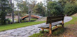Lonely bench. Banco solitario