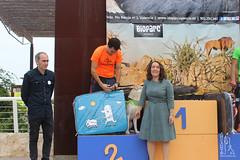 "Entrega de premios de la 5ª Can-rrera Popular de Valencia 2017 • <a style=""font-size:0.8em;"" href=""http://www.flickr.com/photos/145784091@N07/37170502590/"" target=""_blank"">View on Flickr</a>"