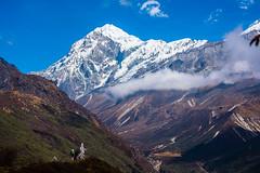 Gocha-la trek in Sikkim, India (David Ducoin) Tags: asia dzongri gochala hike hiking himalaya india kangchenjunga landscape mountain nationalpark nature sikkim trek treking trekking walking gangtok in