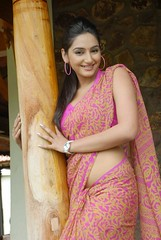 Indian Actress Ragini Dwivedi  Images Set-2 (57)