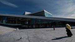 umbrella, seagull, photographers (mr-flo) Tags: shadow sky oslo seagull operahouse umbrella