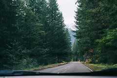 (JuanCarViLo) Tags: national park mount rainier mountain wilderness green trees fair wild road