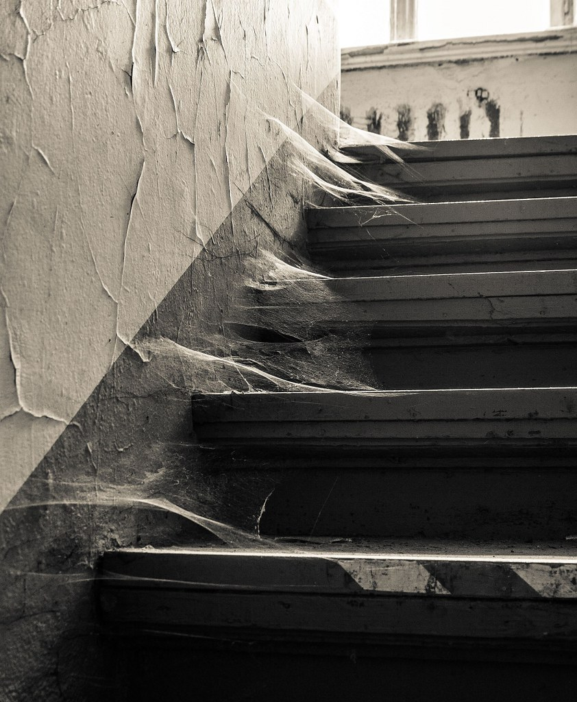 Image result for cobwebs on stairs