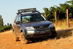 2012 Subaru Forester 2.5x (donaldgruener) Tags: subaruforester subaru forester sh 2012 25x offroad vineyard california