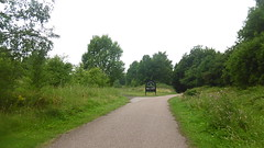 Aldham junction, Barnsley    (Silkstone -  Wath old railway)    facing north     July 2017 (dave_attrill) Tags: stairfoot station barnsley exchange mexborough south yorkshire midland mr railway disused line trackbed footpath cycleway cycle path bridleway trans pennine trail closed 1967 march 2017 bridge court house dearne valley wombwell lane july great central electrified woodhead sheffield victoria manchester picadilly 1970 1955 stocksbridge engine transpennine penistone wortley dunford thurgoland oxspring junction huddersfield allweather remains electrification overgrown silkstone tunnel common 1981 class 76 no1 may 2016