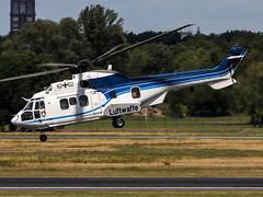 Luftwaffe | Eurocopter AS-532U2 Cougar | 82+02 (Bradley's Aviation Photography) Tags: txl berlin eddt berlintegelairport berlintegel puma cougar luftwaffe germanairforce 8201 as532u2