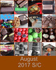 Y8 Day 244, August 2017 Collage (Weld with Rob) Tags: fdsflickrtoys sc817 bighugelabs