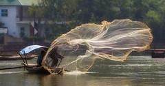 The Fisherman of Kenh Ga (Ninh Binh, Vietnam 2009) (Alex Stoen) Tags: 5dmk2 alexstoen alexstoenphotography canon canoneos5dmarkii collection ef70200f28lisusm fisherman fishingnet flickr floatingvillage geotagged kenhga travel vietnam smugmug webh