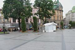Nationalistic demonstration in L'viv (Timon91) Tags: ukraine ukraina ucraina oekraïne oekraine ukrain україна украина lviv lvov lemberg львів львов