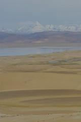IMG_0338 (y.awanohara) Tags: tibet wildlife scenery ngari may2017