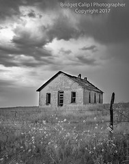 East Bijou Creek School (Bridget Calip - Alluring Images) Tags: 2017 bridgetcalip calhan colorado eastbijoucreek eastbijouschool easternplains elbertcounty sunflowers downdrafts historicschoolhouse ominousclouds rain schoolhouse stormyskies summer