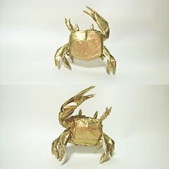 Fiddler Crab - Satoshi Kamiya (Nguyễn Tuấn Tài) Tags: