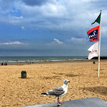 @ Oostende ¬ 20170810_0511 thumbnail