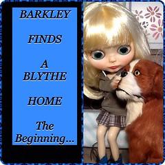 Barkley the Bulldog Finds a Blythe Home: The Beginning