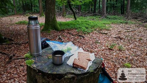Picknick: Wandern beim Elsass beim Château du Wasenbourg